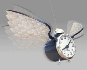 time-flies-clock