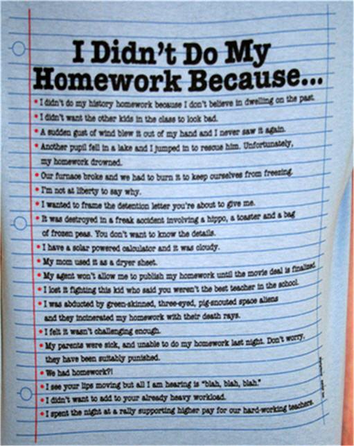 Reasons for no homework