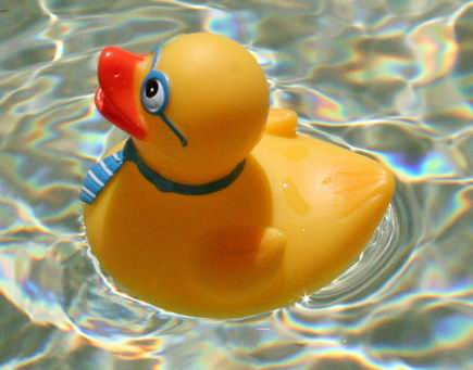 More Like Rowboats Than Rubber Duckies | The New Authors Fellowship