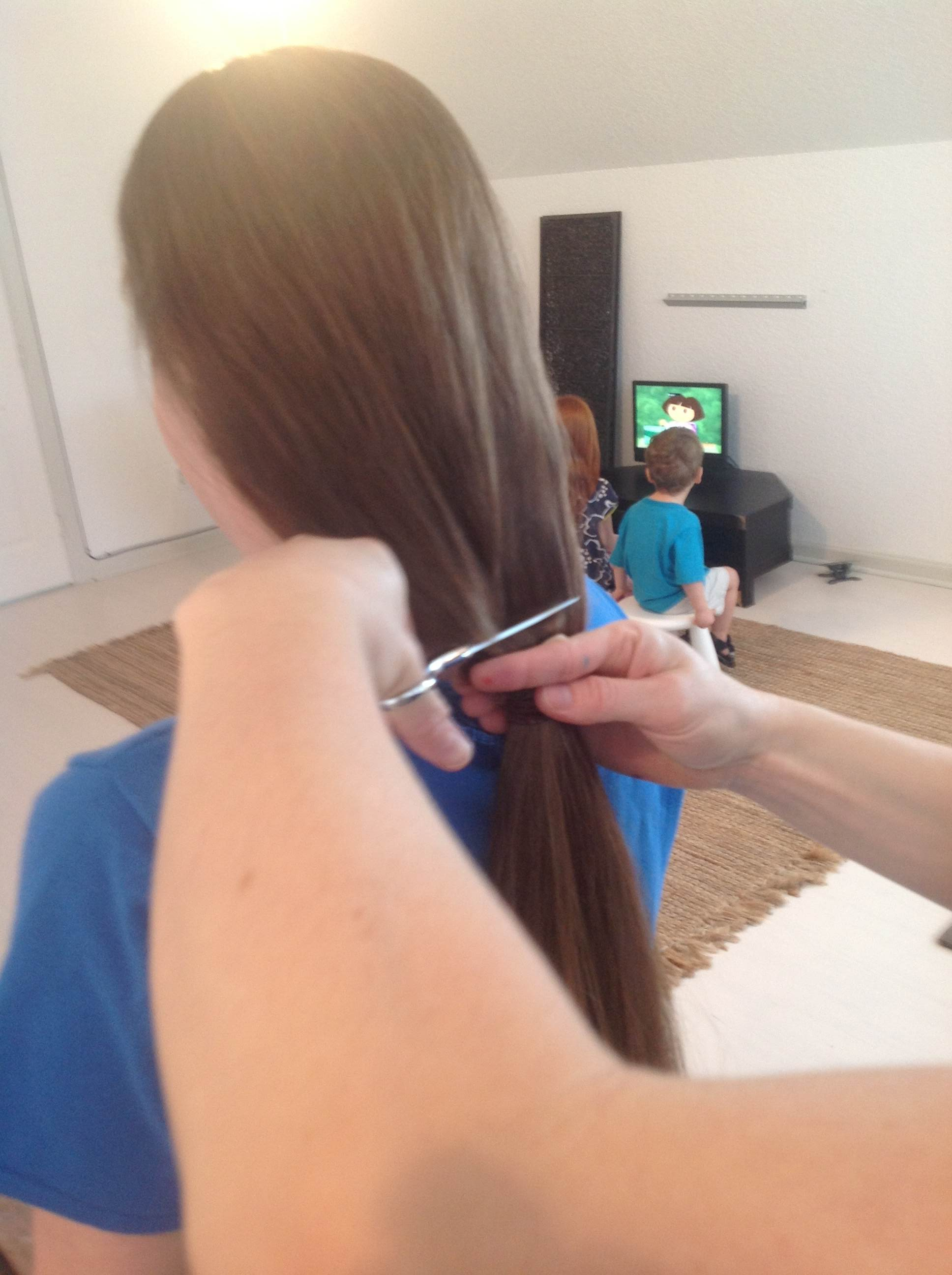 how to grow back hair that has been pulled out