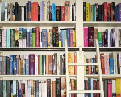books in a bookcase