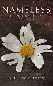 nameless ebook cover-resized