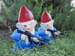 gnome war