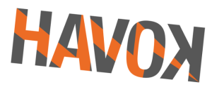 Havok-Logo-300x124
