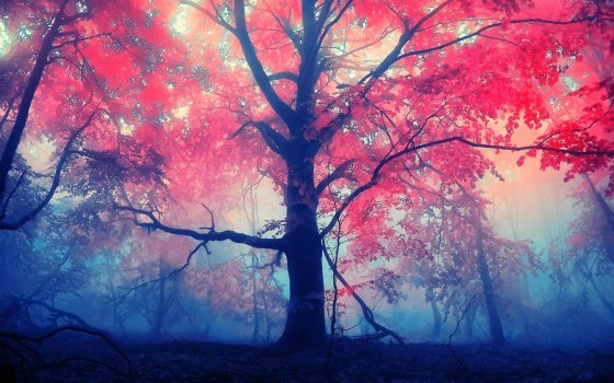 trees-fall-fantasy-art