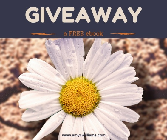 Click the image to enter the Rafflecopter giveaway.